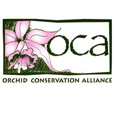 orchid conservation logo