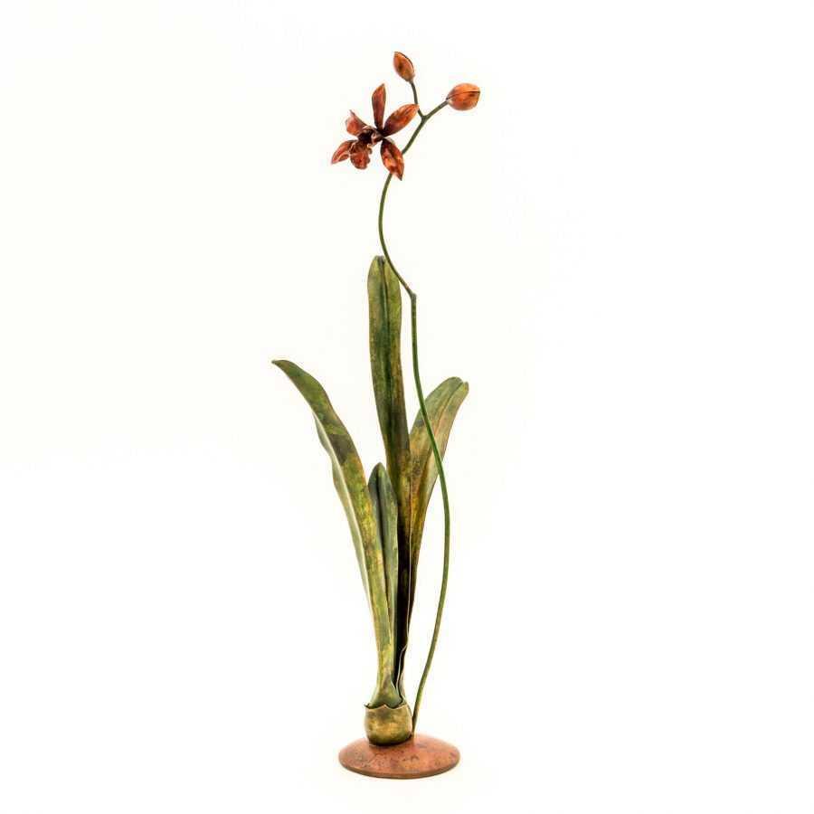 Tall Thin Cymbidium Orchid #18 – SOLD