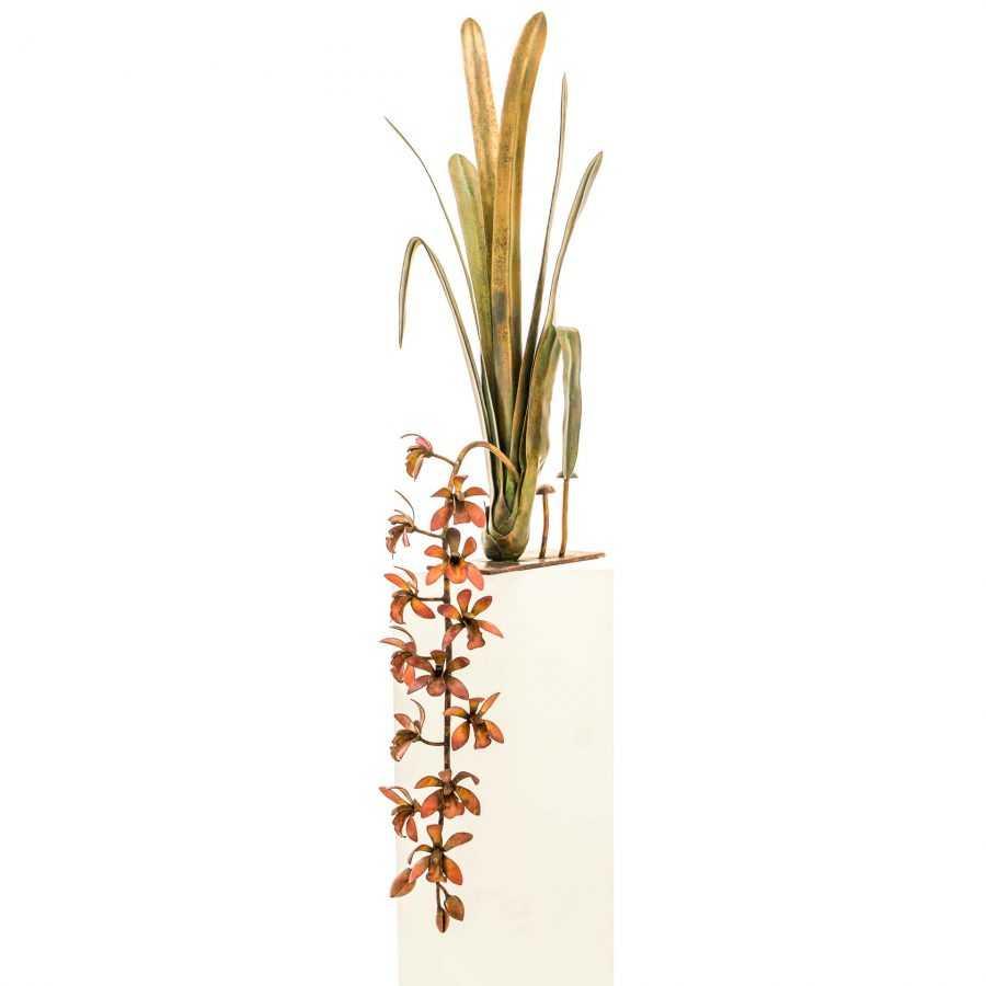 Pendulous Stem Orchid #52