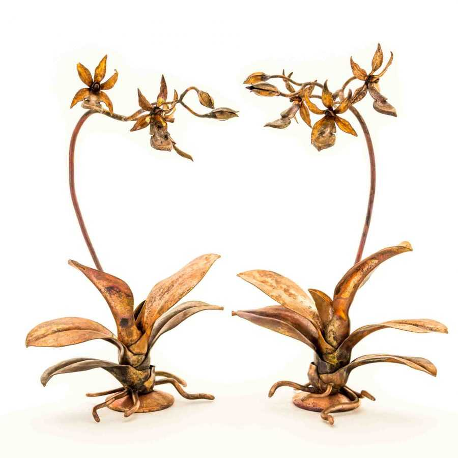 Naked Twin Orchids #41A & #41B – SOLD