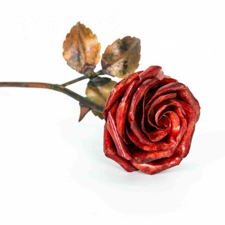 red copper rose