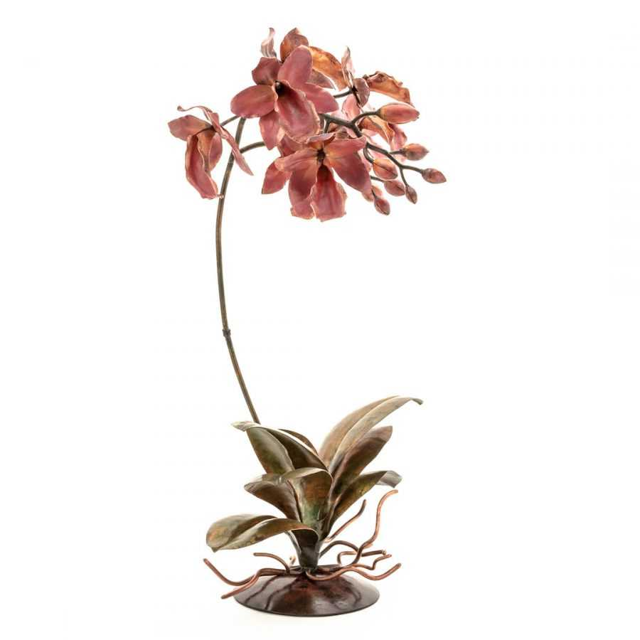 Pink Cattleya #40