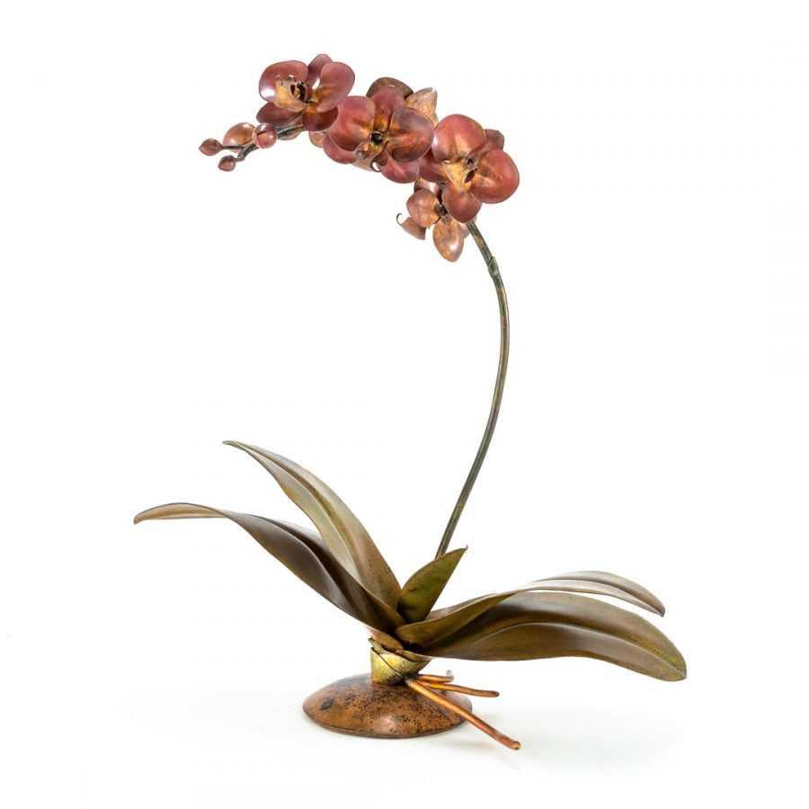 Coral Red Phalaenopsis #88