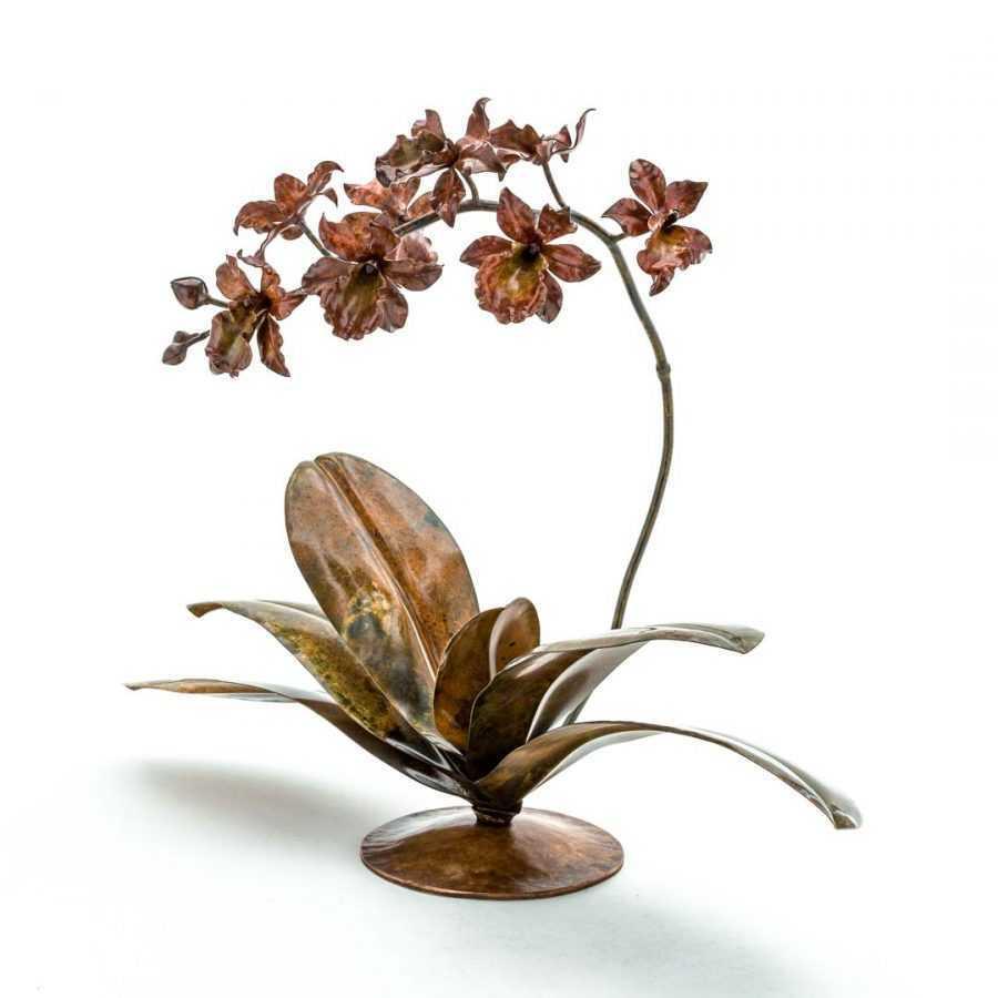 Red & Mustard Cymbidium Orchid #49